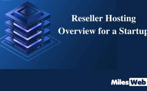 Reseller Hosting Overview for a Startup